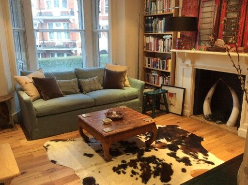 Beautiful pair of Ankole cattle horns finds new home in London fireplace