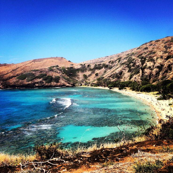 17 Best Ideas About Scuba Diving Oahu On Pinterest