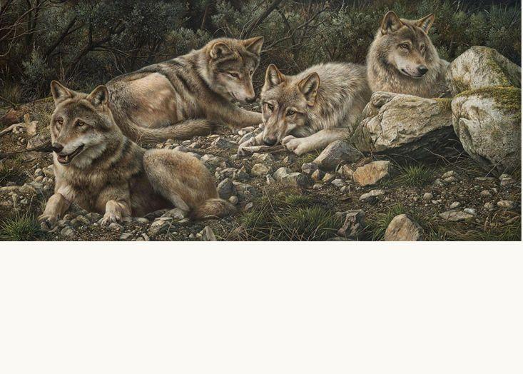 Forever Wild by Canadian Artist Denis Mayer Jr