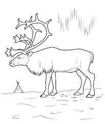 Картинки по запросу северный новогодний олень