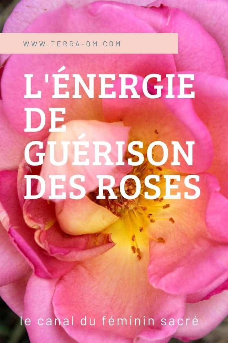 Le Pouvoir De Guerison Des Roses Soigner Par L Energie Du Feminin Sacre En 2020 Feminin Sacre Magnetiseur Guerisseur Energie Quantique