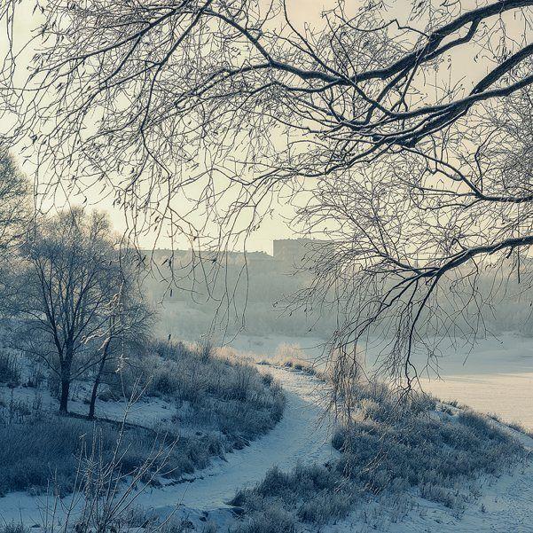 Красивый у нас парк... А зимой он еще и сказочный... #фотоизабеллазубкова#лес#раменское#парк#зима#тропинка#природа#пейзаж#путешествия#landscape#nature#travel#scenery#beautiful#view#scenic#tourism#natural#tree#environment#snow#winter#path#park#izabellazip#фотограф
