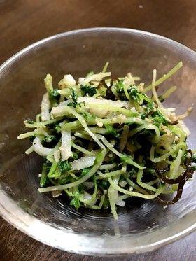 大根と豆苗のナムル