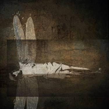 "Saatchi Art Artist Dagmar Lukes; Photography, ""Untitled"" #art"