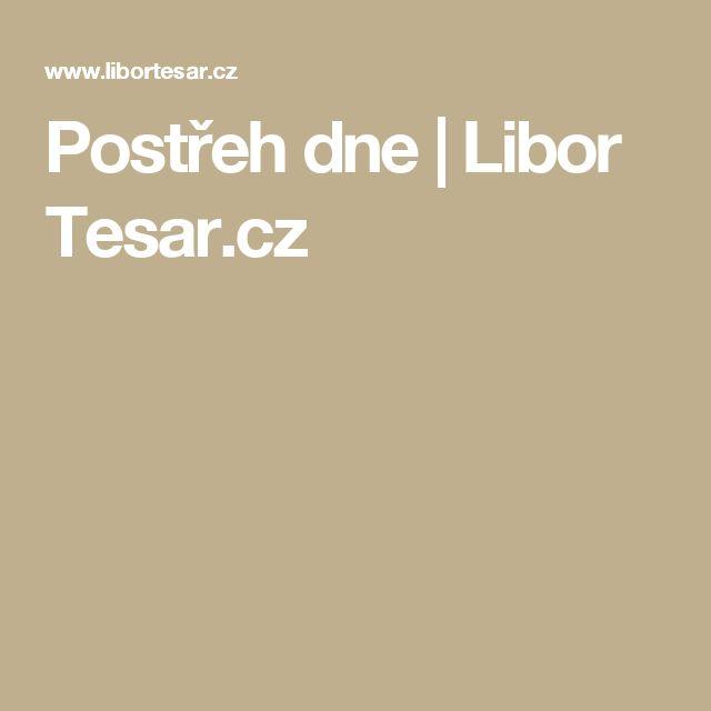 Postřeh dne | Libor Tesar.cz