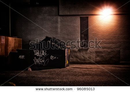 A dirty, dark, shadowy and dangerous looking urban back-alley at night time with garbage dumpster. by Derek R. Audette, via Shutterstock