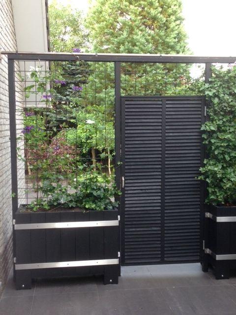 25 beste idee n over groene hortensia op pinterest groen hortensia boeket groene hortensia - Allee tuin idee ...
