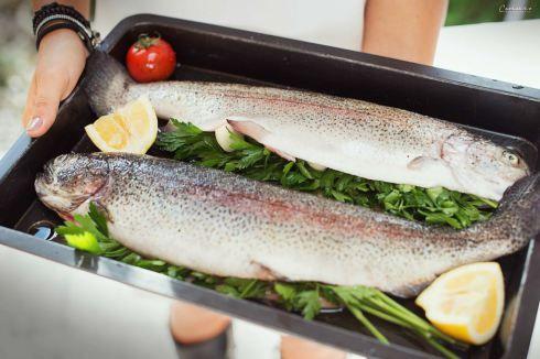 Lachsforelle aus dem Ofen. Salmon made in the stove filled with lime, herbs and garlic. Fisch aus dem Ofen, Fisch einfach, Fisch im ganzen, gefüllter Fisch in der Kaiser Backform
