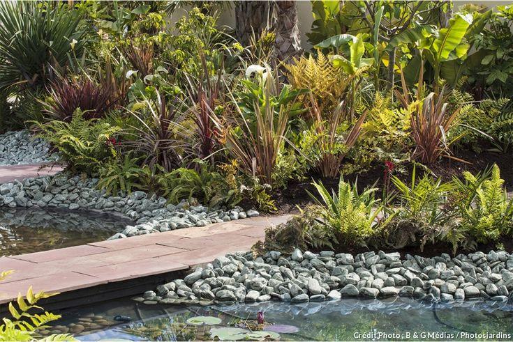 les 75 meilleures images du tableau bassin et plantes aquatiques sur pinterest id es de jardin. Black Bedroom Furniture Sets. Home Design Ideas