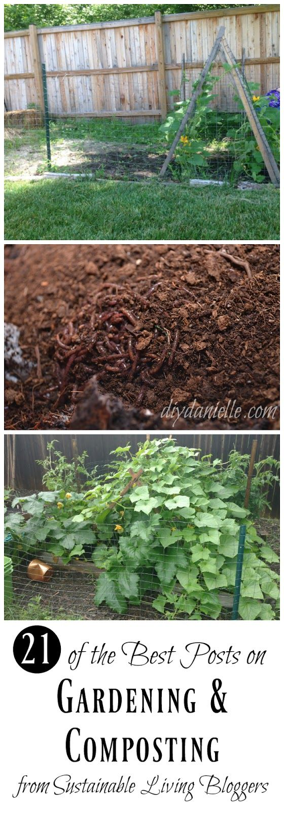 Gardening and Composting: 21 posts that cover everything from edible weeds to biosolid compost.