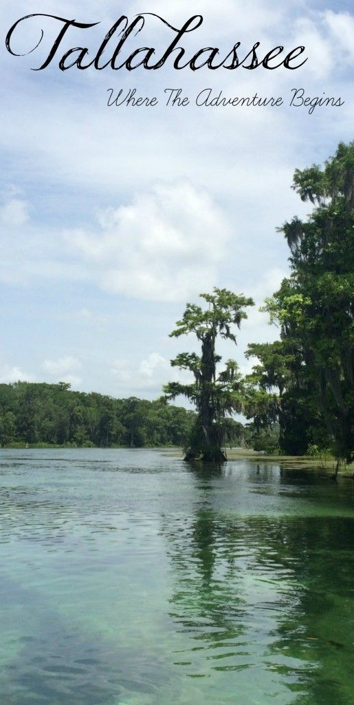 What to do in Tallahassee Florida