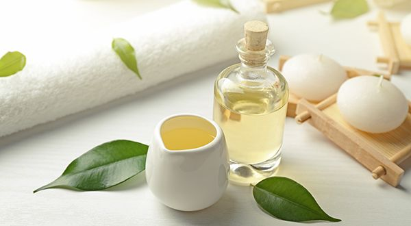 Tea Tree Oil Benefits: This Powerful Essential Oil is a Germ Destroyer - Discover the tale of what started the world's love affair with the melaleuca tree and the amazing tea tree oil benefits.