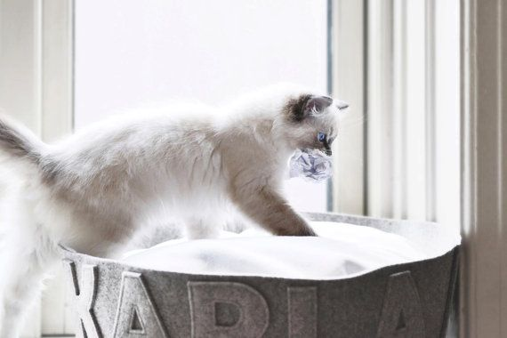 Cat bed Designer cat bed Modern cat bed Cat bed name Gift for cats Customizable cat bed Grey natural felt cat bed Fleece cover @napsdesign BED on #etsy #etsyhome #etsyfinds #design #pets #dogs #puppy #puppies #homedecor #ragdoll #white