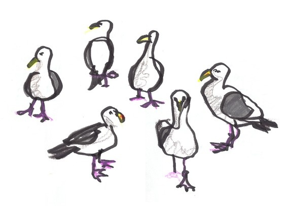 Noisy, messy seagulls. Gotto love them!