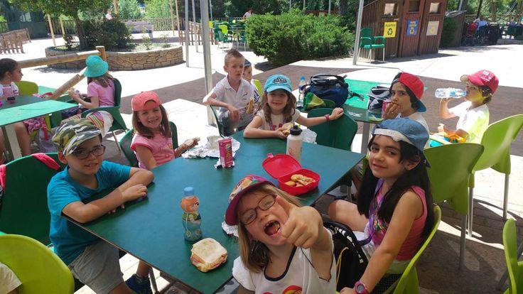 Nada más y nada menos que al Zoo de Madrid se fueron los alumnos de primero de primaria.