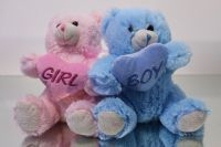 Girl /Boy Teddies - Super Floral Distributors - Decor, Floral accessories and Crafters accessories in Cape Town
