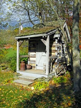 little old shed~~~~~~~~
