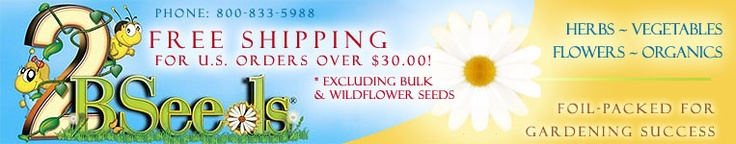 Flower Seeds, Vegetable Seeds and Herb Seeds from 2B Seeds- This site has Organic seeds and lots of information on planting etc.  www.2bseeds.com/