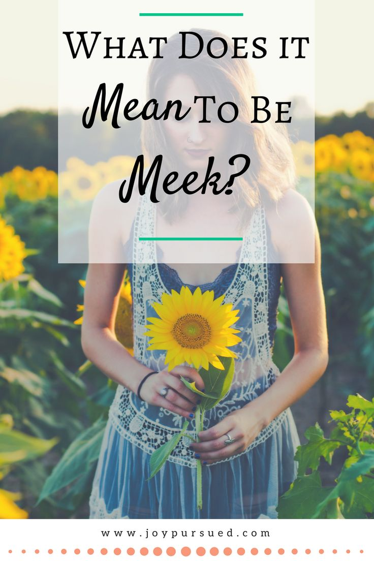 Learn the biblical definition behind the word meek and how it should apply to our everyday lives. Salt and Light Linkup