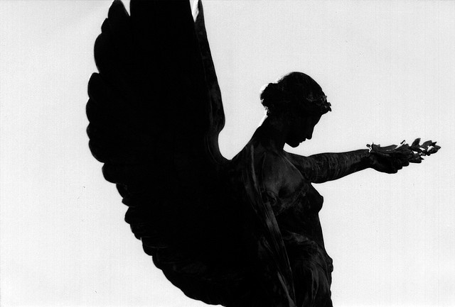 angel bw by ricoeurian, via Flickr