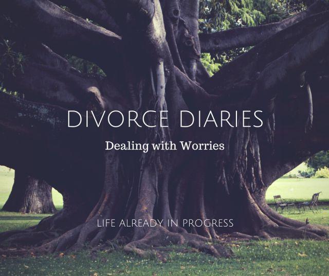 divorce Diaries