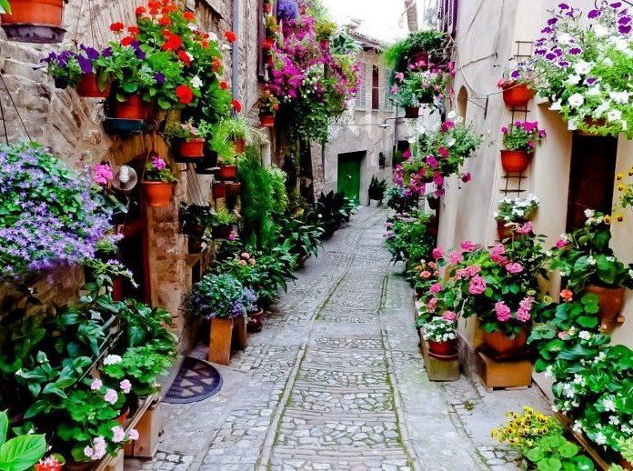 Small town flowers nice france pinterest Small nice garden