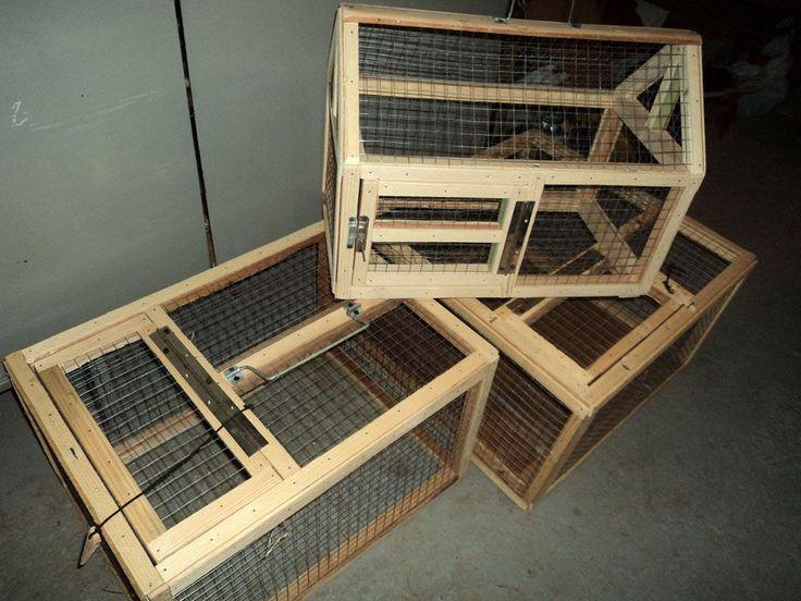 Клетки для кроликов своими руками одноярусные