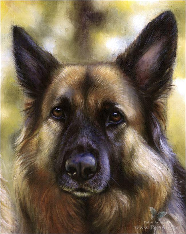 Pet Portraits of German Shepherds  Order an oil painting of your pet now at www.petsinportrait.com