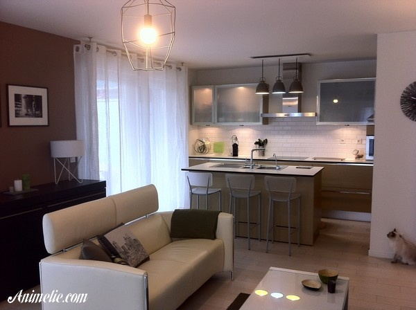 Décoration Salon Taupe Et Blanc, By Animelie. Living Room Decor White And  Brown Taupe