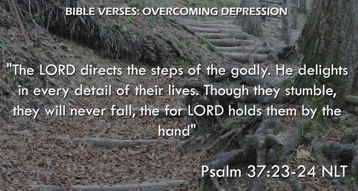 """The LORD directs the steps of the godly. He delights in every detail of their lives. Though they stumble, they will never fall, the for LORD holds them by the hand"" Psalm 37:23-24 NLT"