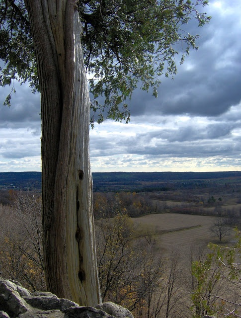 The view from Rattlesnake Point in Milton, Ontario