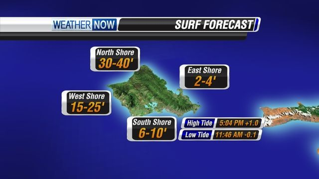 SURF FORECAST - OAHU #hawaii #surfing #ハワイ