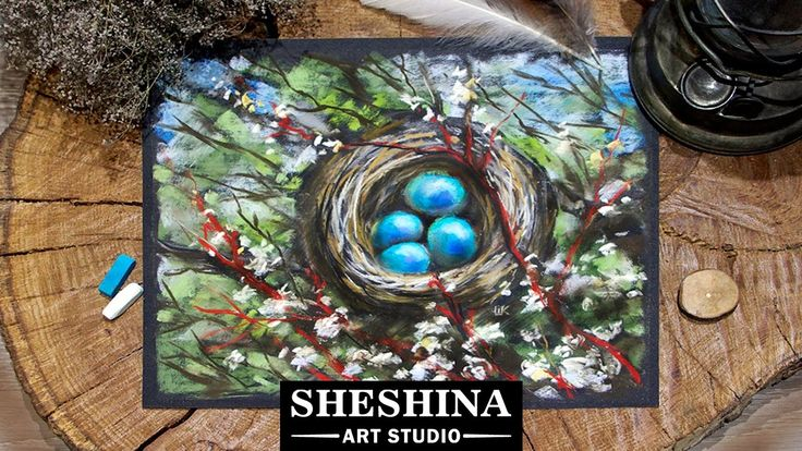 How to draw a nest on a blossom tree with soft pastels 🎨 Sheshina Ekaterina