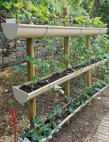 Kleiner Gemüsegarten für Anfänger_32 #Gärtnern…