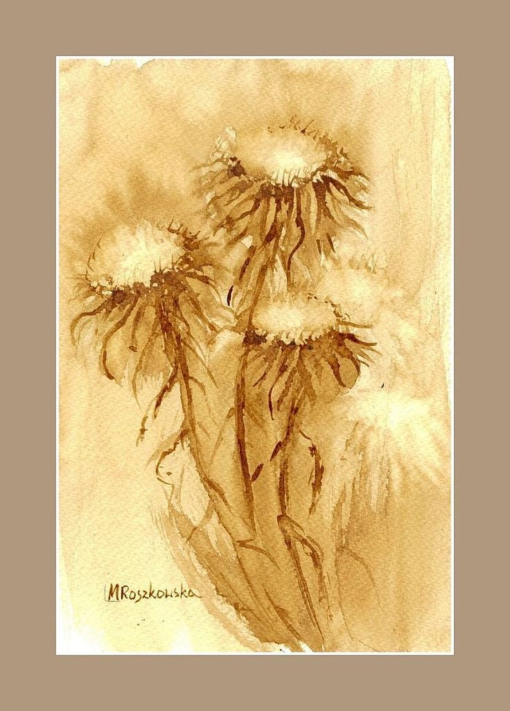 Suche badylki -  watercolour painted with coffee  http://www.artmarylacoffee.pl/