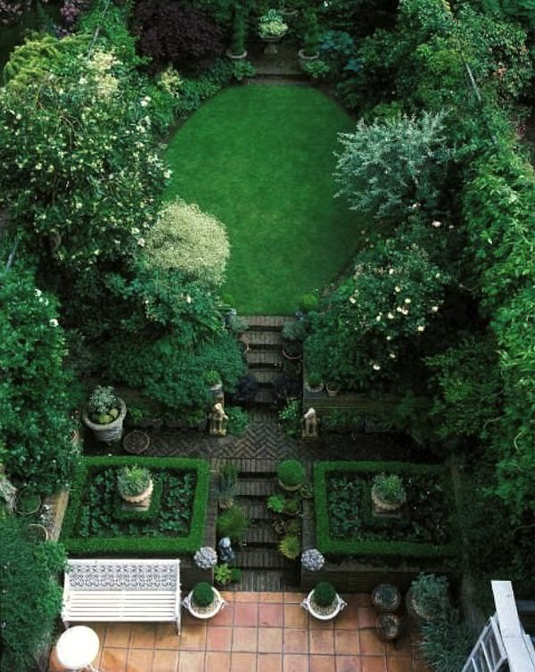 49 best Privacy hedges for backyard images on Pinterest ...
