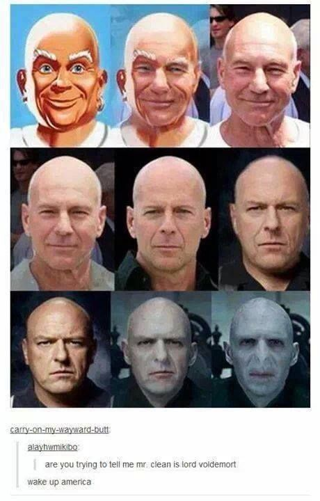 Picard is neither Mr. Clean or Lord Voldemort. Thank you very much. I do believe me. Clean is Lord Voldemort though. XD