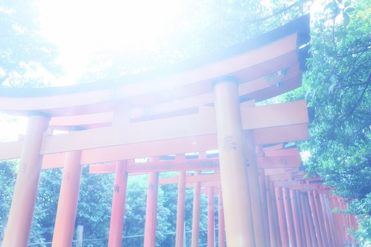 NezuTemple  #tokyo #japan #scenery