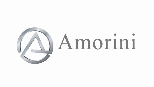 Amorini - Leaders in Kitchen Design The Company The Systems The Product
