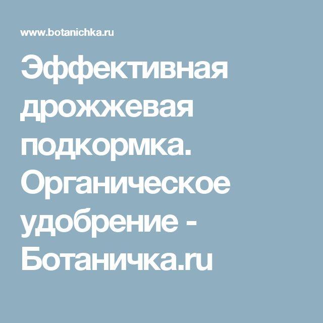 Эффективная дрожжевая подкормка. Органическое удобрение - Ботаничка.ru