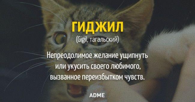 20 слов, которых нет в русском языке.