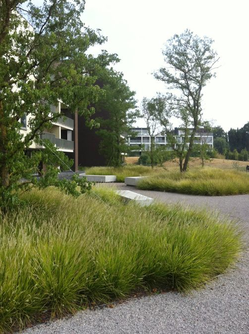 684 best images about parken openbaar groen on pinterest for Ornamental grasses for small spaces