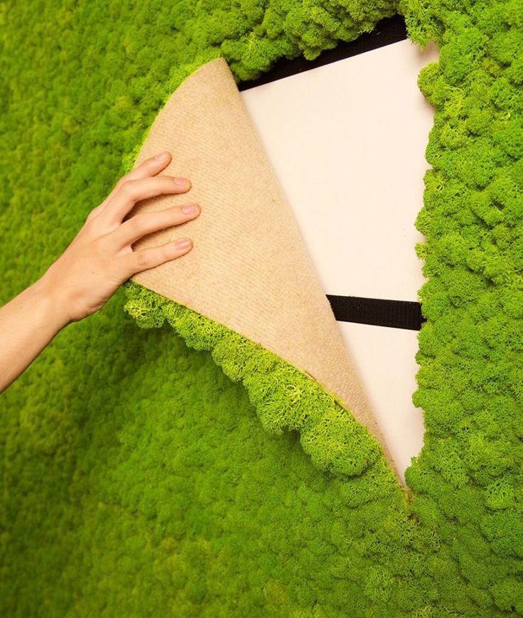 Best Of Living Moss Wall Art Diy