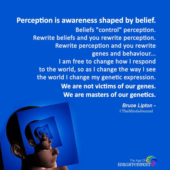 Perception Is Awareness Shaped By Belief Perception Quotes