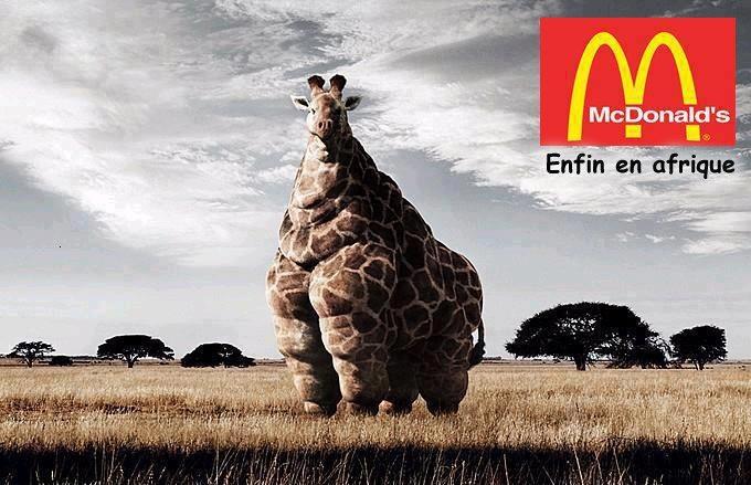 Mc Do in Africa.
