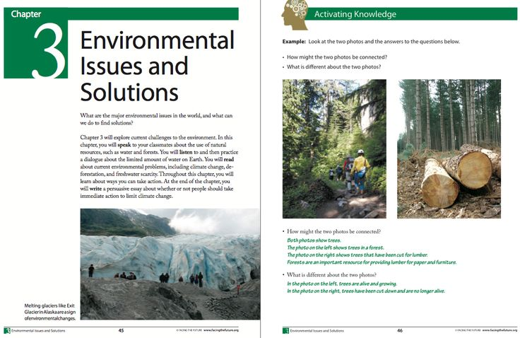 environmental issues qa essay