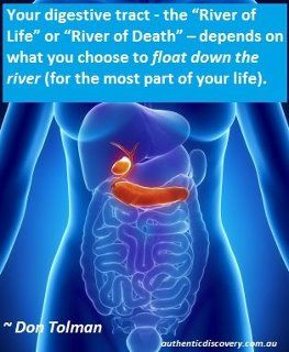 Our digestive system and colon are part of our internal rivers. Our blood system and lymph system are also streams and rivers. What we put into these rivers (even negative thoughts and emotions) contribute to how clean and efficient these rivers run...therefore contributing to good health or ill health.
