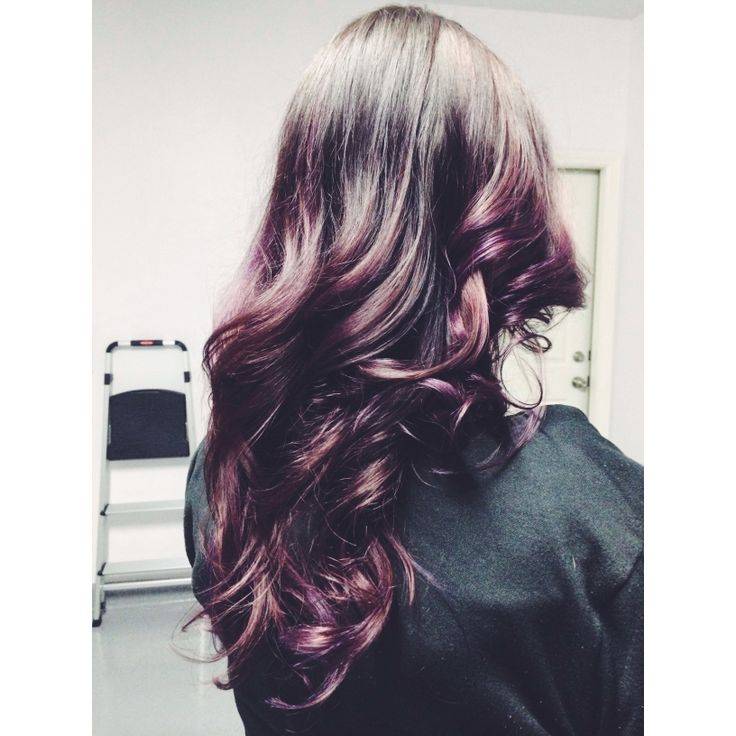 Dark Plum Ombre Hair | www.imgkid.com - The Image Kid Has It!
