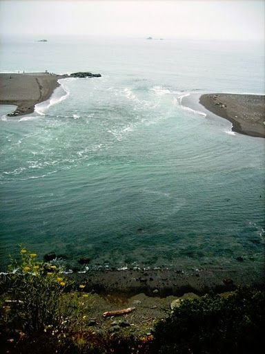 Jenner Ca  Where the Russian River meets the Pacific Ocean.