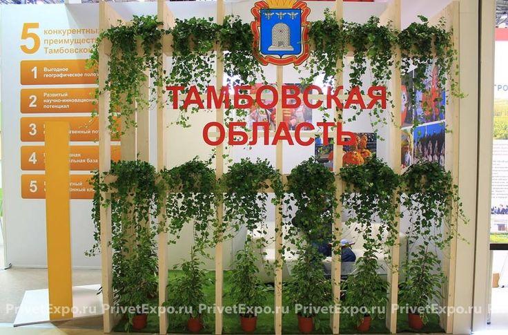 Фото выставочного стенда Тамбовская область